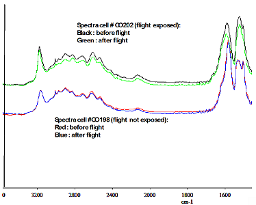 Infrared spectra of glycine films (NH2CH2CO2H)